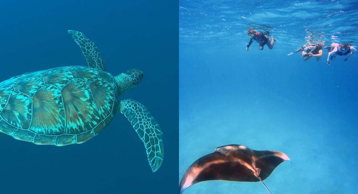 Family Excursions - Vilamedhoo Maldives Resort